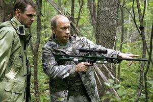 Putin legt bet‰ubter Tigerin Halsband mit Sender an