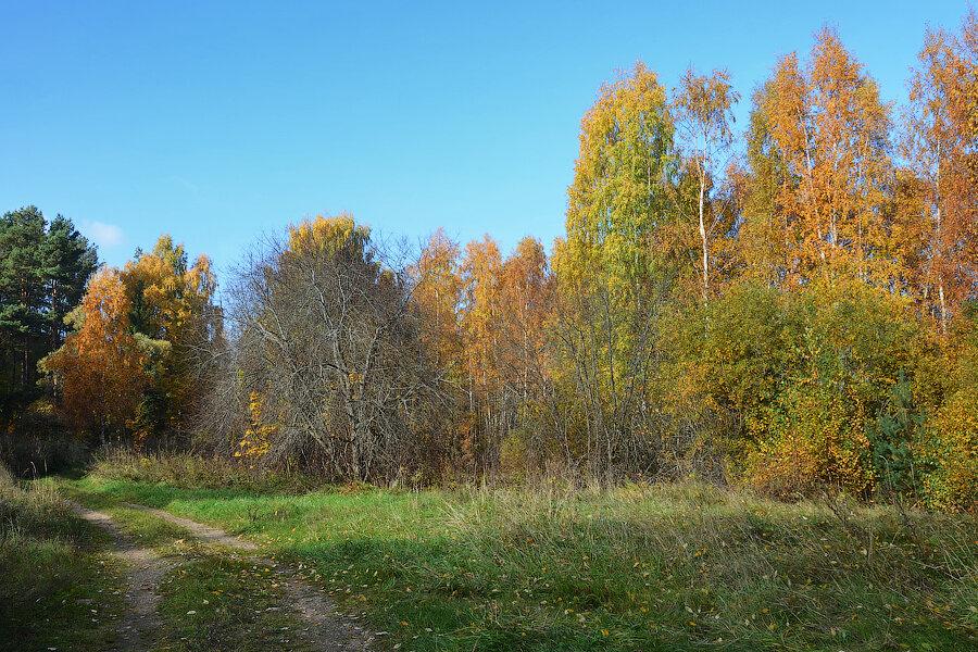 http://img-fotki.yandex.ru/get/4903/118405408.1fe/0_b8545_65347c8_XXL.jpg
