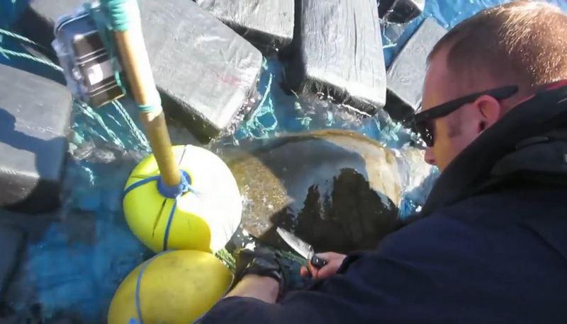 Черепаху с 800 кг кокаина стоимостью более $53 миллионов выловила береговая охрана США