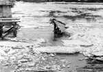 18. 8 апреля 1962 года. Ледоход. Основные повреждения ледореза..jpg