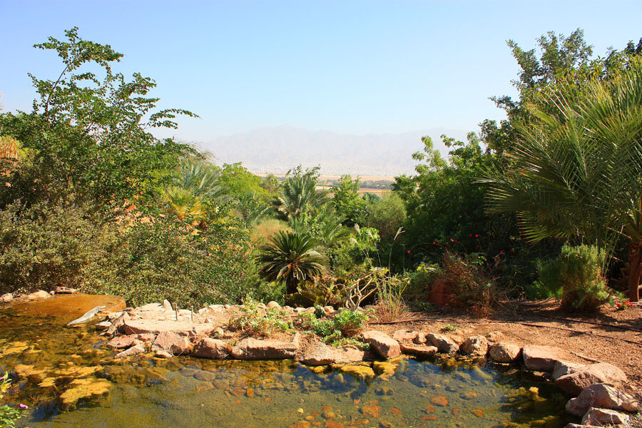 Botanical Garden  (13).jpg