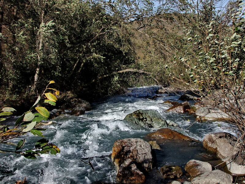 река Фиагдон