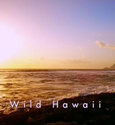 Невиданные Гавайи
