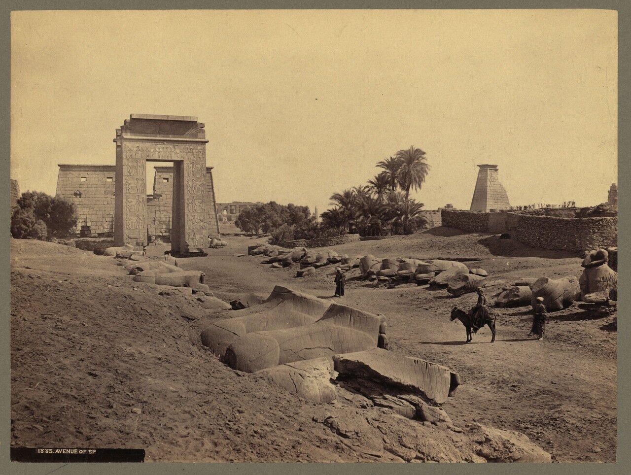 Фивы. Карнак. Колонны боковой части Великого гипостиля храма Амона