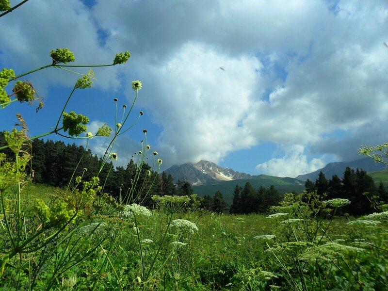 В стране гор, у реки Цеце