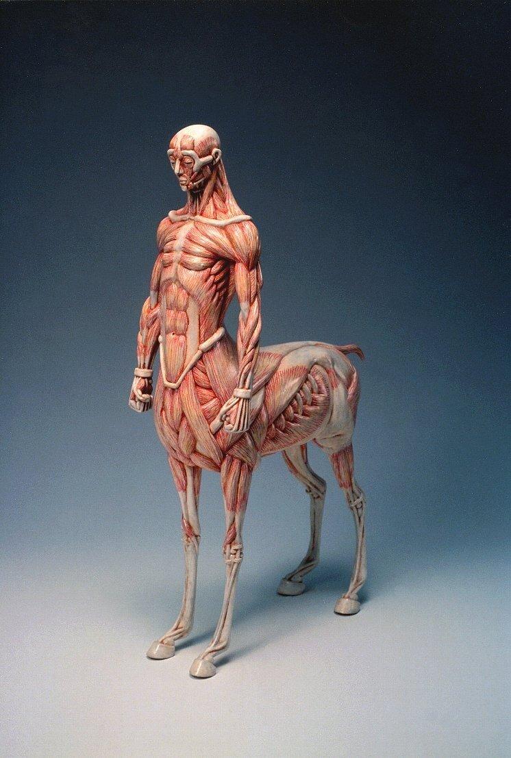 Film pregnant centaur softcore gallery