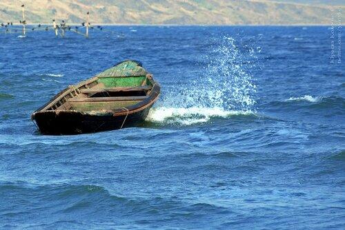 сонник лодка на воде с веслами