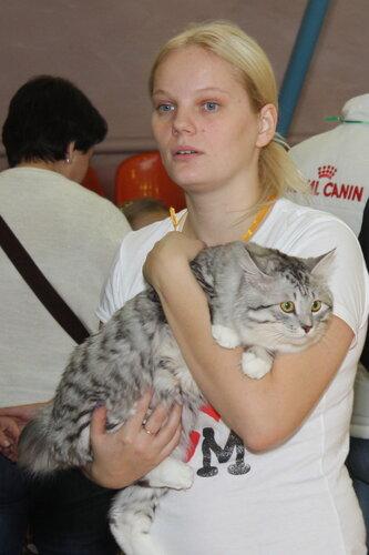 """Международная выставка кошек """"Удивительные кошки"""", 5-6 октября 2013, г. Сургут, ХМАО 0_dd9d0_d1bc3b37_L"""