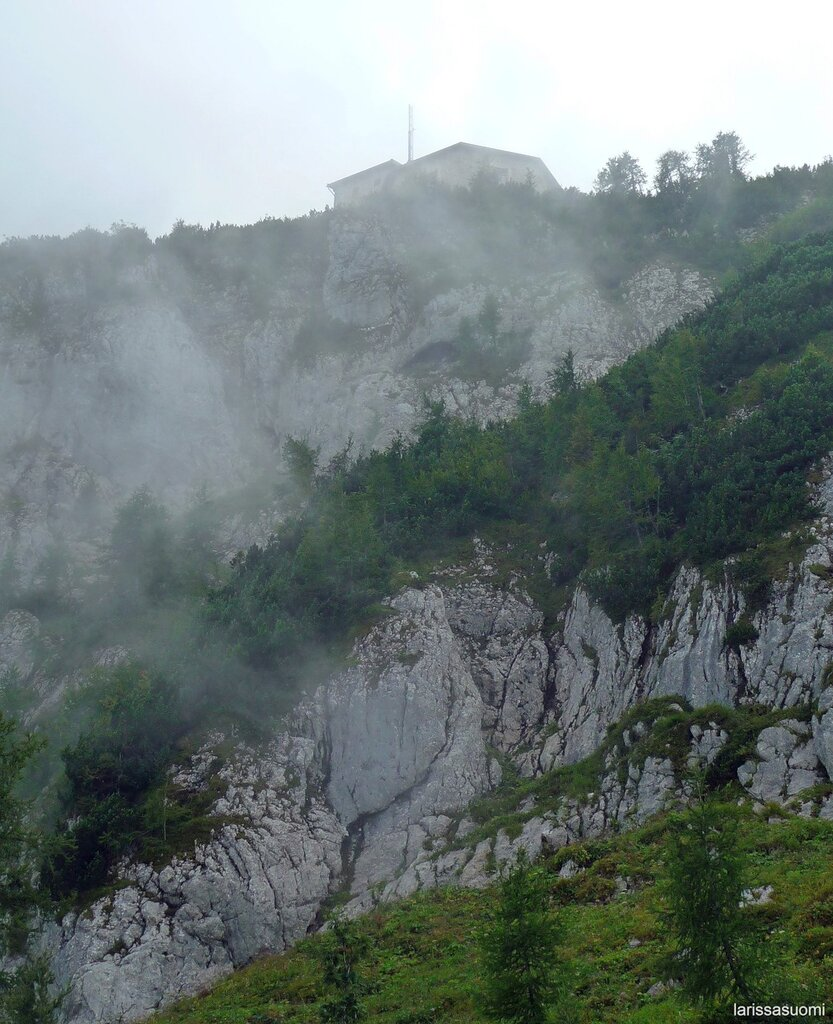 Туман. Вид на
