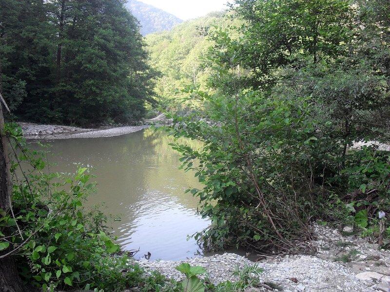 Река Пшада и её окрестности...