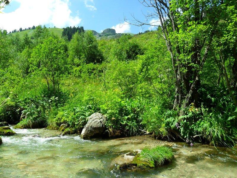 В стране гор, река Цеце