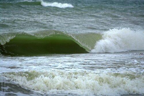 Зелёная волна