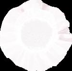 Lilas_La-vie-en-rose_elmt (75).png