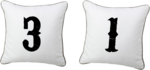 Holliewood_HauteHalloween_Pillow2.png