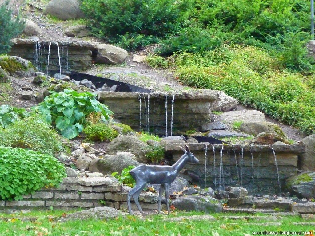 Водопад и косуля.