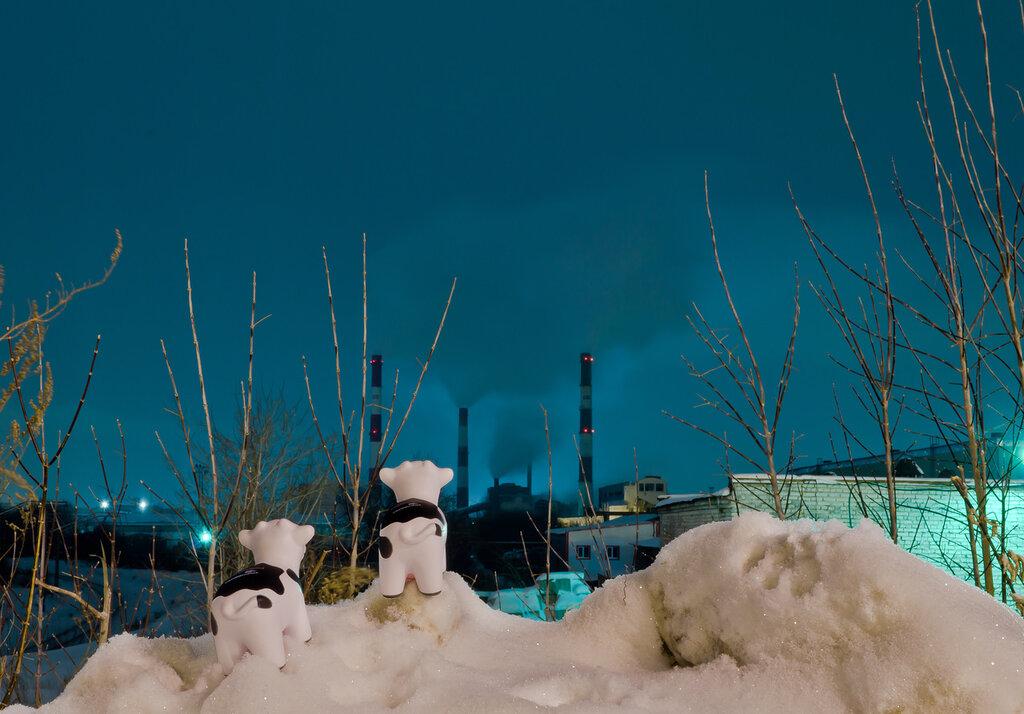 Индустриальный пейзаж Екатеринбурга с коровами. Снято со штатива на Nikon D5100 c КИТ 18-55 VR