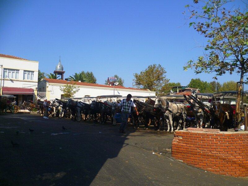 Стоянка лошадей на Принцевых островах около Стамбула (Parking horses on the Princes' Islands near Istanbul).