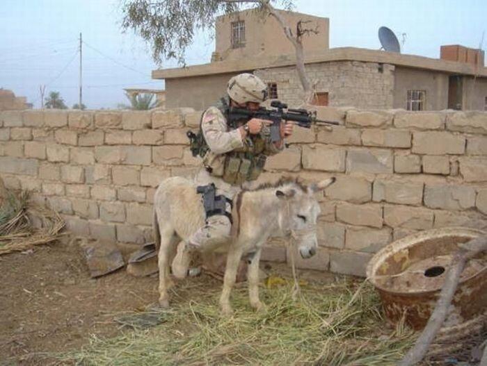 Смешные армейские будни hilarious_army_photos_72