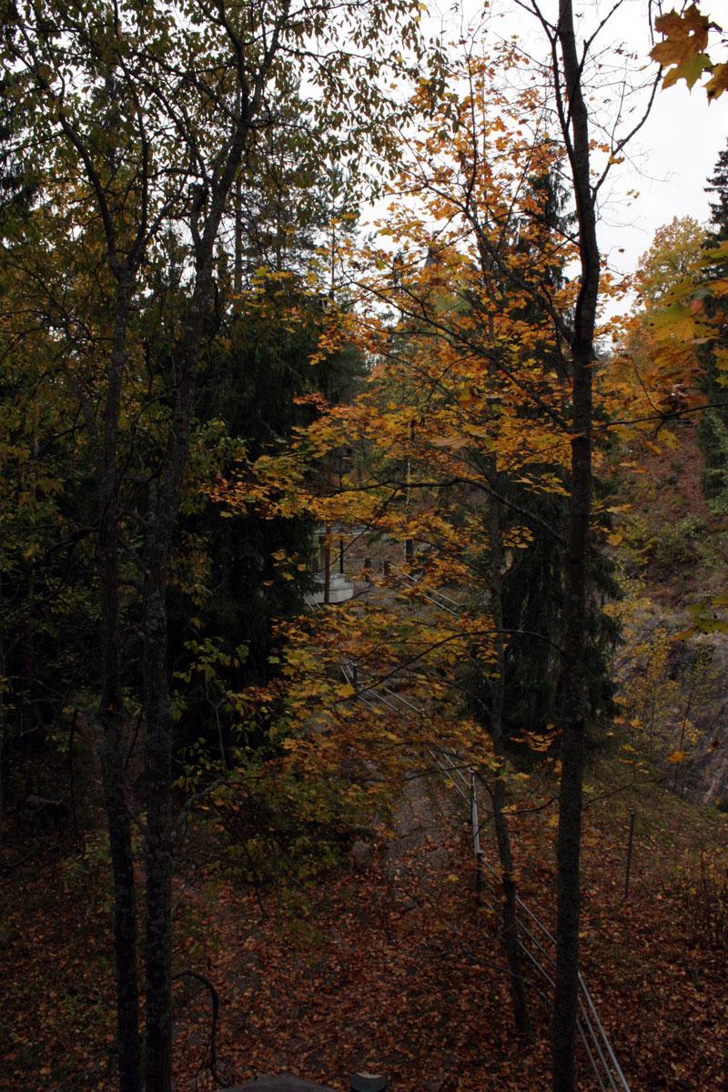 осень в Иматре