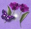 сиреневые цветы и бабочка