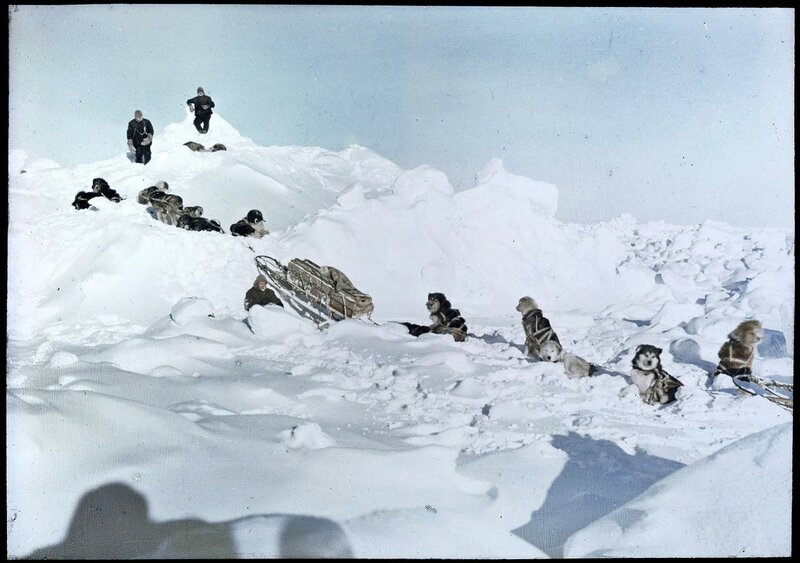 1915 Restored color photograph of members of the Antarctic Shackleton Expedition and their dogs.jpg