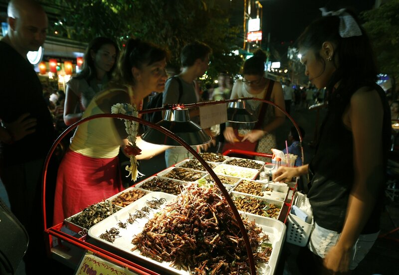 The edible insects farming for Thailand's mainstream markets