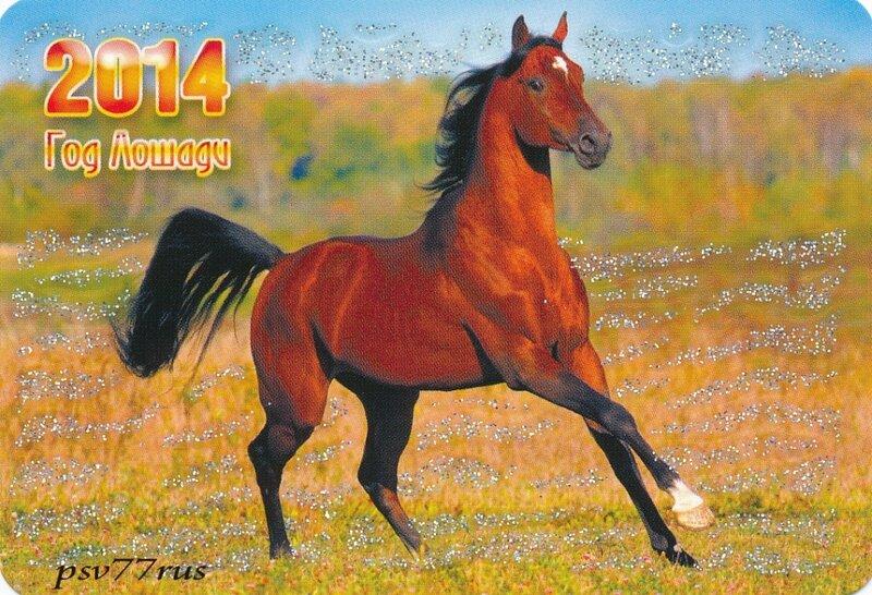 какой год был до лошади