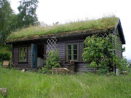природный дизайн дома