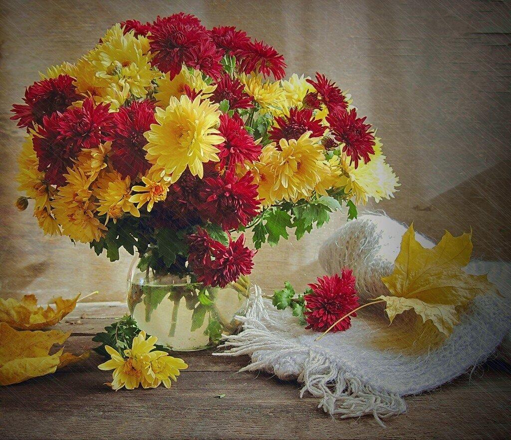 Осень хризантемы обои на рабочий стол 2