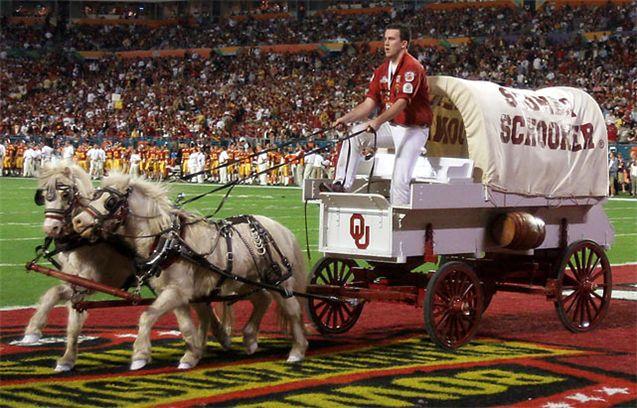 Живые талисманы в студенческом спорте / NCAA Top Real Animal Mascots - Boomer and Sooner / Oklahoma
