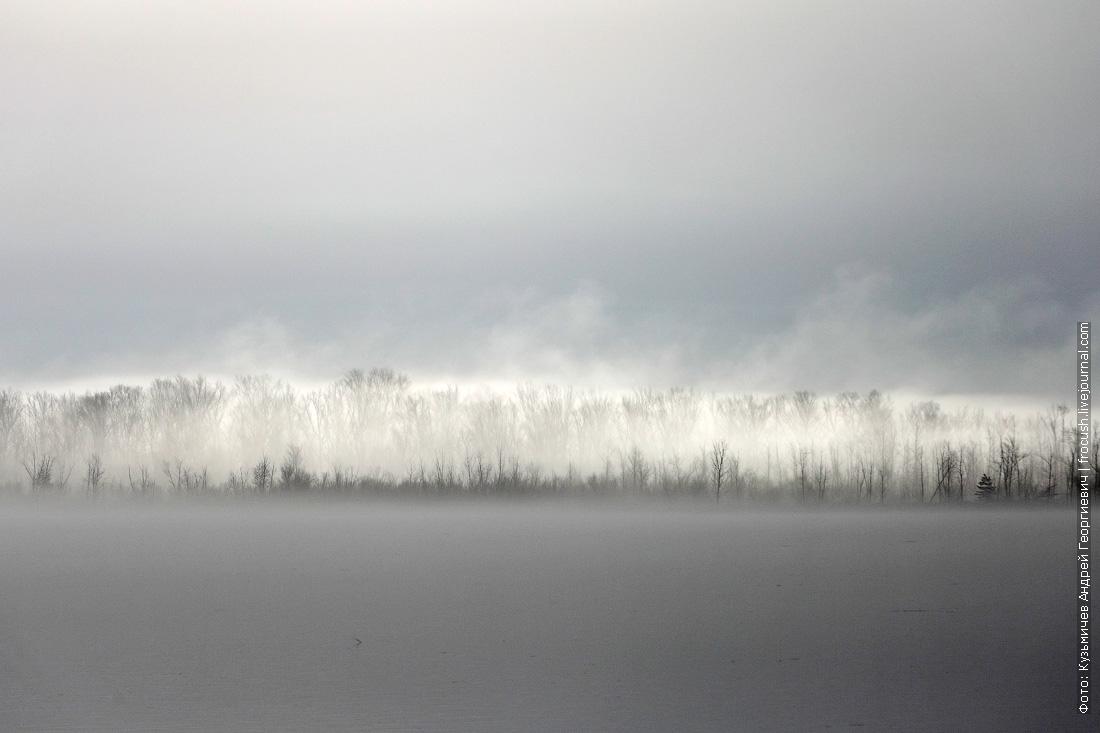 пологий левый берег Волги в тумане