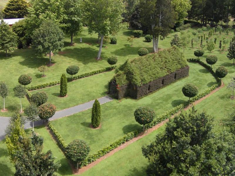 Мужчина 4 года выращивал церковь из деревьев (10 фото)