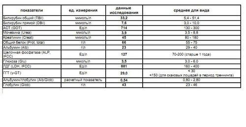 http://img-fotki.yandex.ru/get/4907/6008417.d/0_9e128_8e49ee70_L.jpg