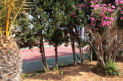 фрагмент теннисного корта