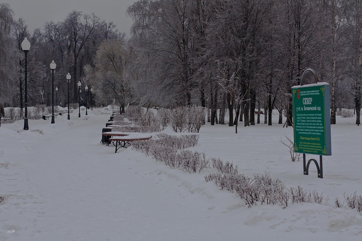 Сквер у станции метро Ботанический сад