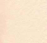 RR_EndlessEphemera (40).png