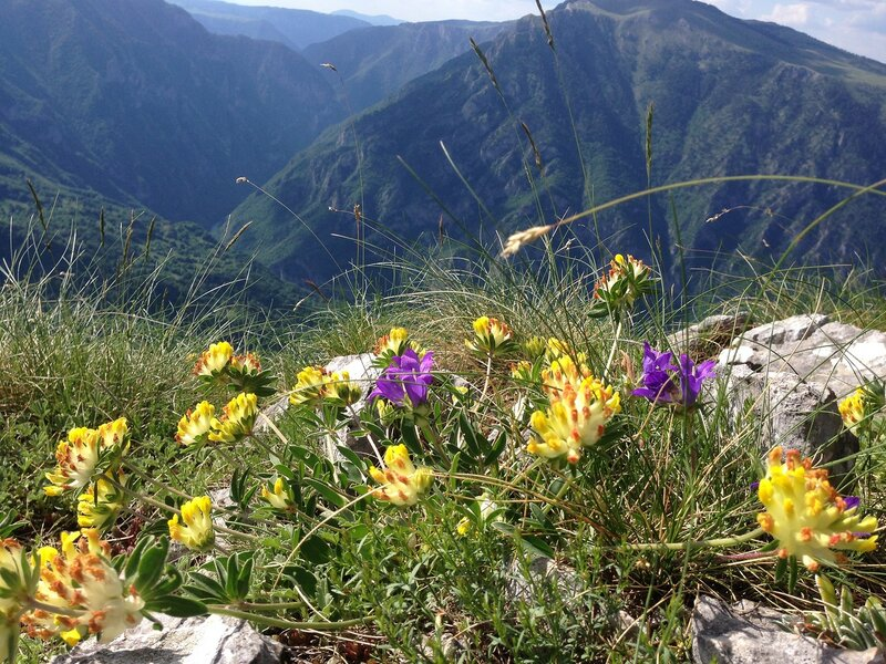 что посмотреть в Черногории: Дурмитор