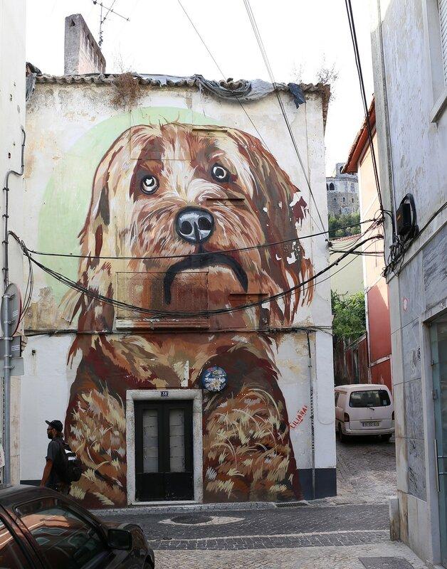 Leiria. Graffiti