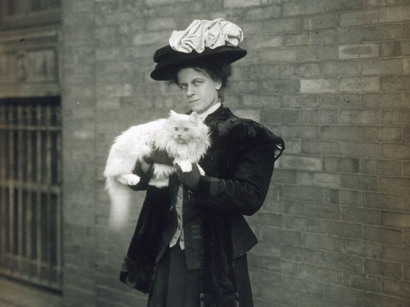 Билс со своей кошкой.