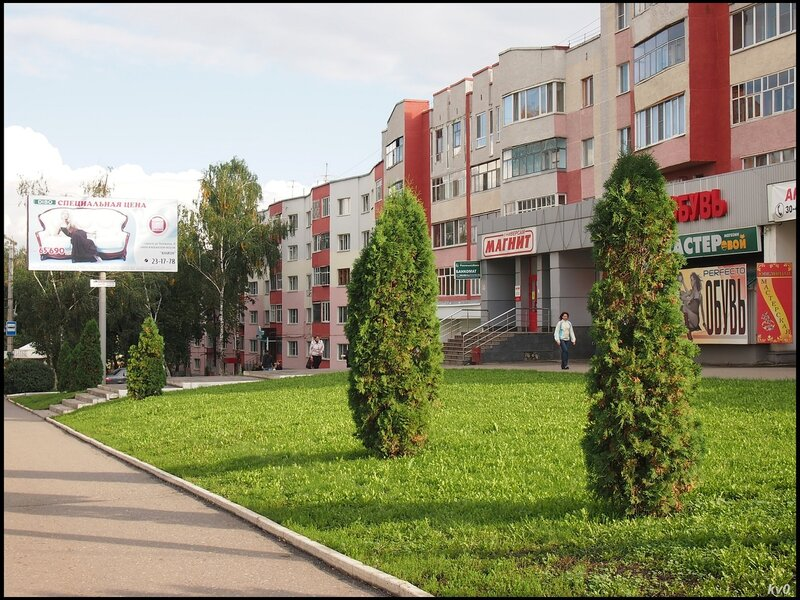 Газоны Саранска