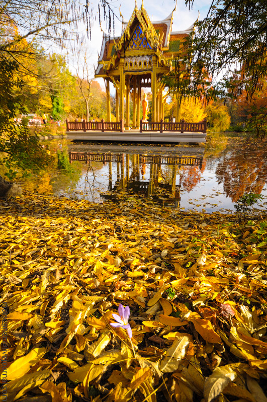 Herbst-Munchen-2013-(73).jpg
