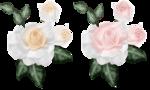 RoseLightspainting~V.png