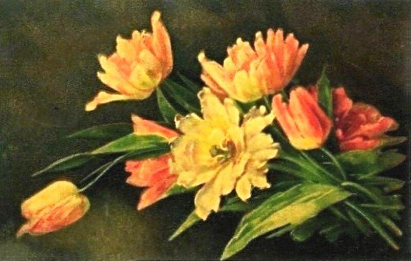 К. Кляйн. Тюльпаны.