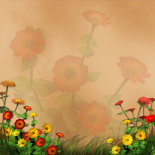 Подборка фонов с цветами 37