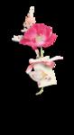 Palvinka_FlowerEssence_cluster (7).png