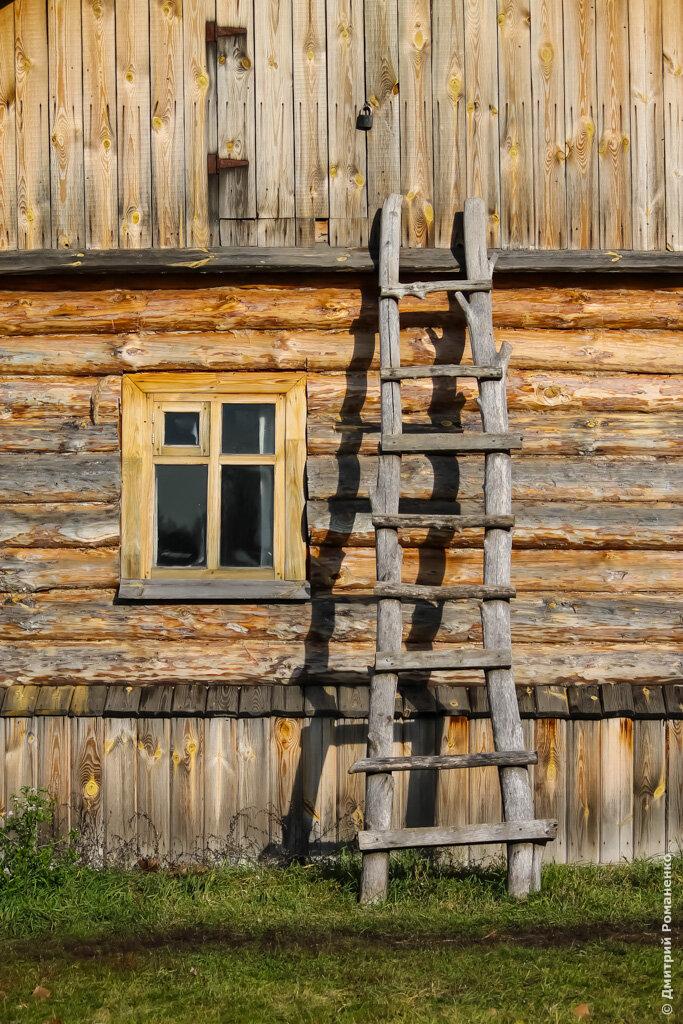 хуторок, эко, село, подворье, Грайворонский район, Козинка