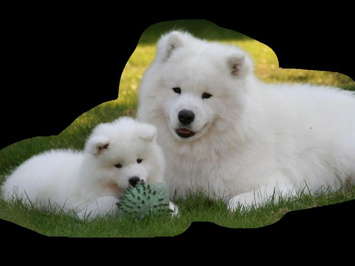 http://img-fotki.yandex.ru/get/4909/39663434.104/0_716c7_8eea1581_XL.jpg