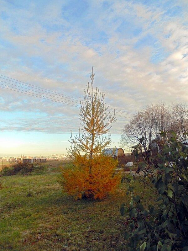 Осенний денёк в Острове