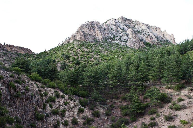 скалы и сосны в горах инь шань, внутренняя монголия, китай