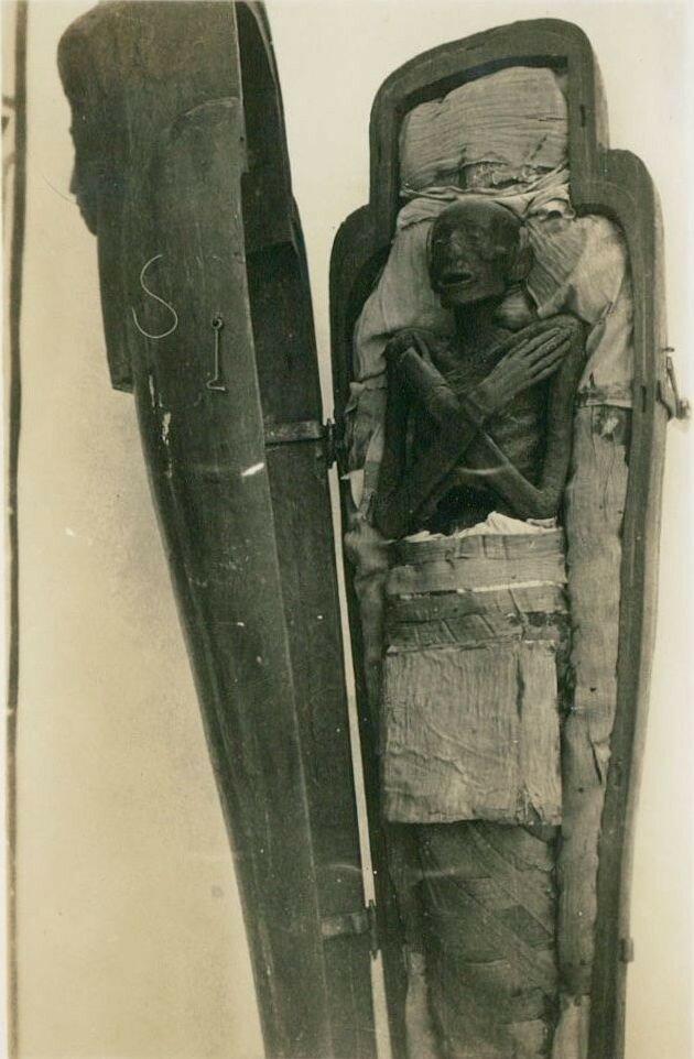 Мумия первосвященника фараона Рамсеса II. 1947